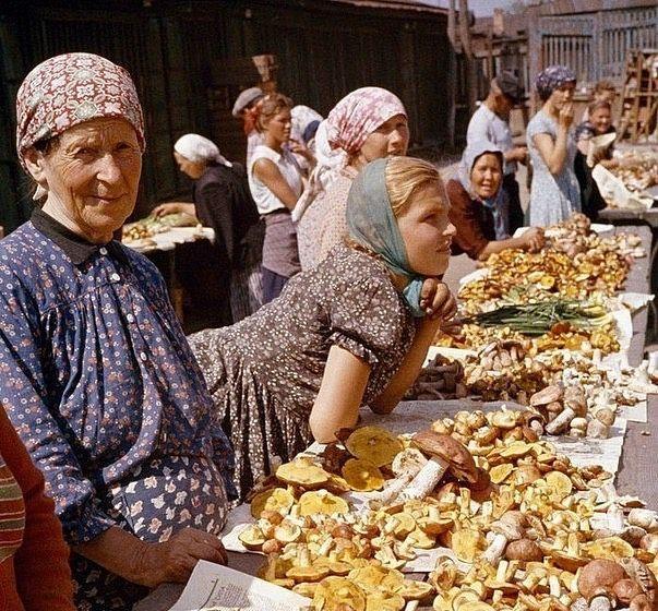 Продажа грибов на Даниловском рынке, Москва, 1959 г.