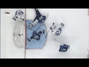 GOTTA SEE IT: Vasilevskiy Makes Unbelievable Stop With Toe For Save Of The Year