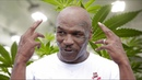 Mike Tyson Is Building A WEED RANCH in California What's Trending Now
