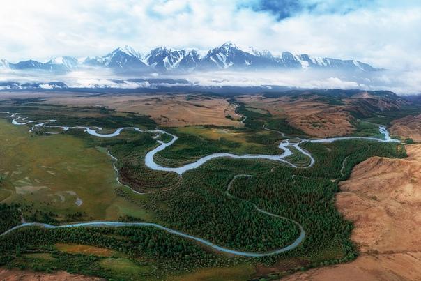 Курайская степь, Алтай