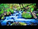 Успокаивающий ручей. Расслабляющий поток воды, успокаивающие звуки воды - 4 часа для дневного сна