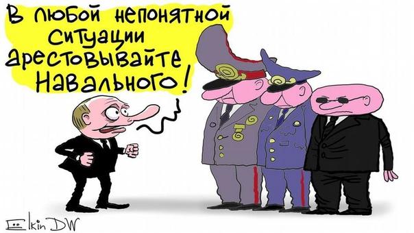 Володин поручил проверить деятельность Навального и Соболь на предмет иностранного вмешательства в выборы.