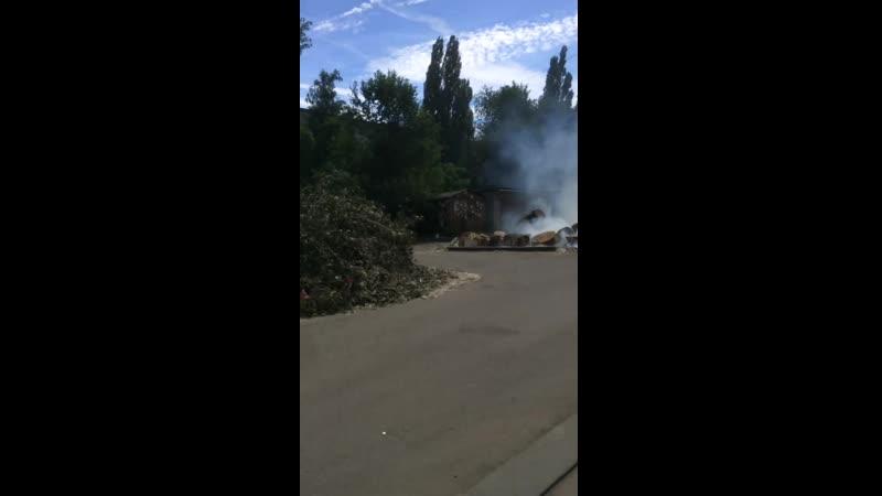 Во дворе Липецка загорелись спиленные деревья