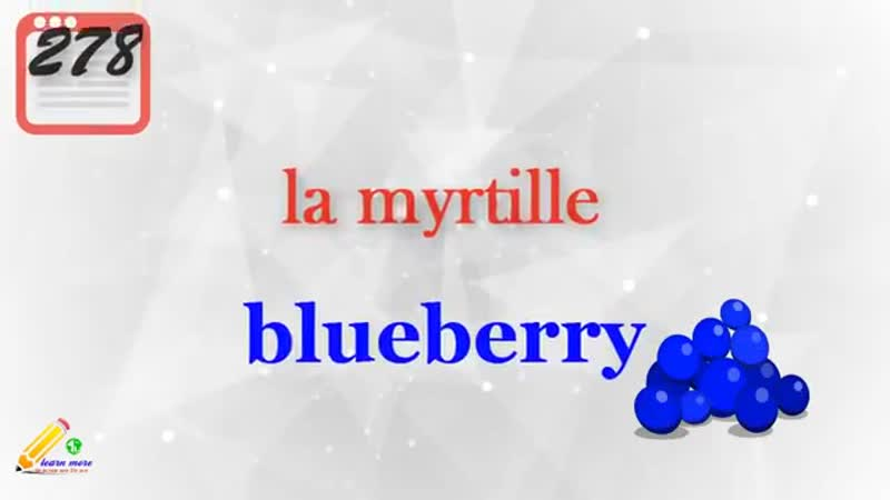 (sound-n-PIC) Top 500 French Words in one Video