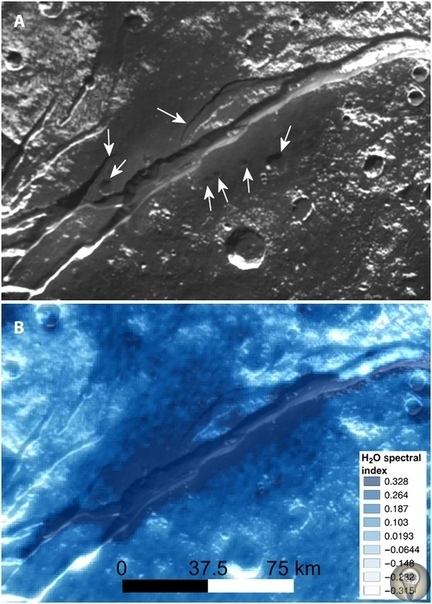 Станция New Horizons нашла на поверхности Плутона аммиак