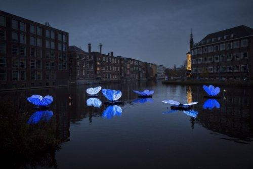 Амстердамский фестиваль света-2019: улицы нидерландской столицы украсили световые инсталляции Художественные инсталляции с подсветкой будут освещать улицы нидерландской столицы до 19 января 2020