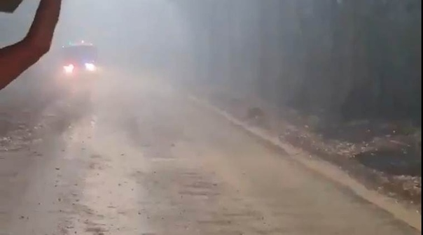 В объятой пожарами Австралии, от Мельбурна до Сиднея, пошел дождь. Осадки, которые будут идти до субботы, приостановят распространение пожаров и помогут в их тушении.