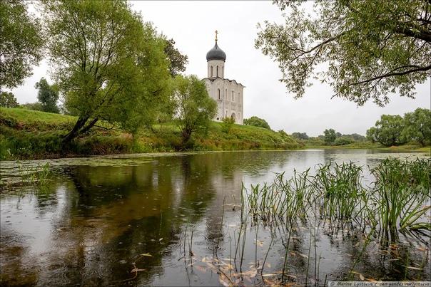 Церковь Покрова на Нерли уже восемь веков стоит на перекрёстке рек Нерль и Клязьма