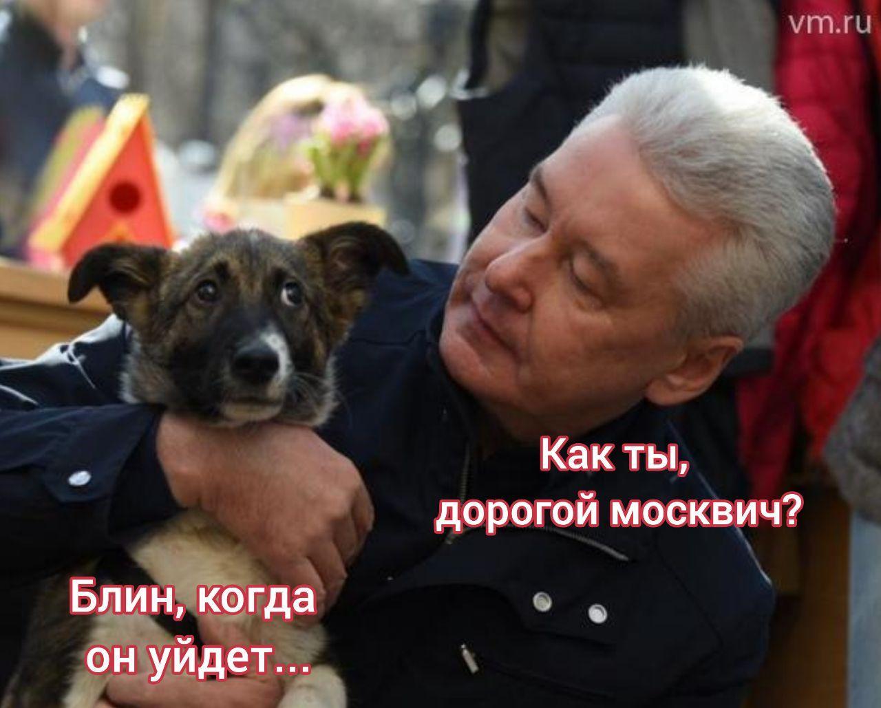 После эпидемии коронавируса ходить по Москве по...