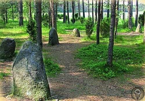 Венсеры. Каменная загадка Польши Каменные круги в кашубских Венсерах до сих пор являются одной из самых таинственных загадок Польши. Версий о их появлении и предназначении огромное множество. То