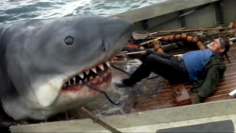 5 классных фильмов о противостоянии акулы и человека Лучшие фильмы