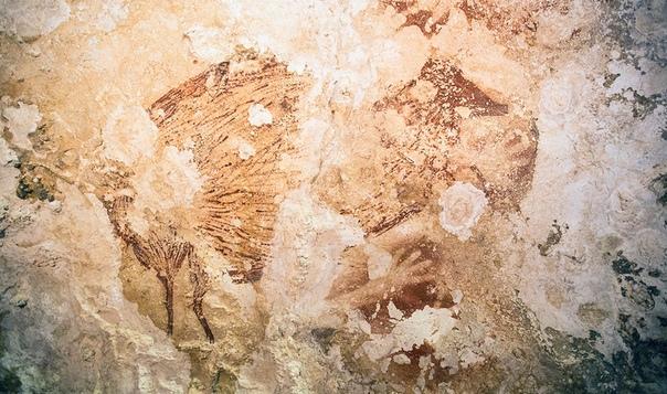 Самый древний рисунок в мире обнаружен на острове Сулавеси Рисунки в пещере на острове Сулавеси, обнаруженные два года назад, признаны самими древними из известных науке. Их возраст крайне