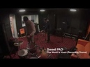 Sweet PAD The World Is Yours Recording Drums