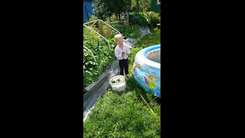Велес в огороде счастлив:)