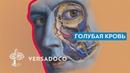 Versadoco Голубая кровь - Почему древние изображали синих богов
