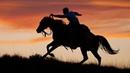 Выйду ночью в поле с конем Песня группы Любэ