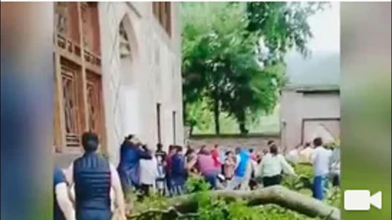 При падении ветки 500-летнего дерева в Азербайджане пострадали 19 человек