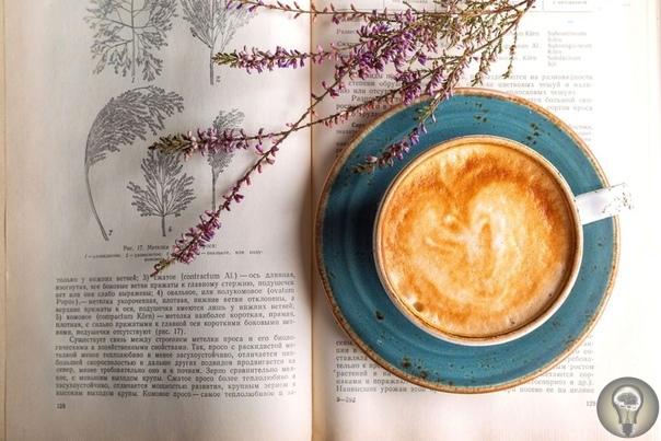 Влияние книг на психологическое состояние