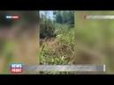 Срочно Последствия обстрела Горловки украинскими карателями Горит вся улица Брусилова
