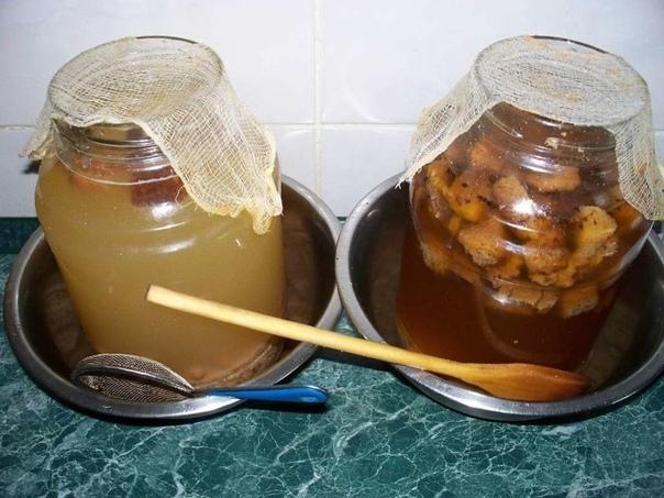 10 вкуcнeйшиx супep - peцeптoв дoмaшнeгo квaca
