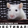 Фестиваль декоративные крысы в ЛОФТ ПРОЕКТ ЭТАЖИ