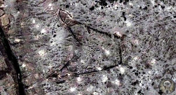 О загадочных строениях на плато Устюрт, которые видно только с самолета или из космоса На территории Средней Азии есть множество интересных мест и одно из них огромное плато Устюрт. Расположено