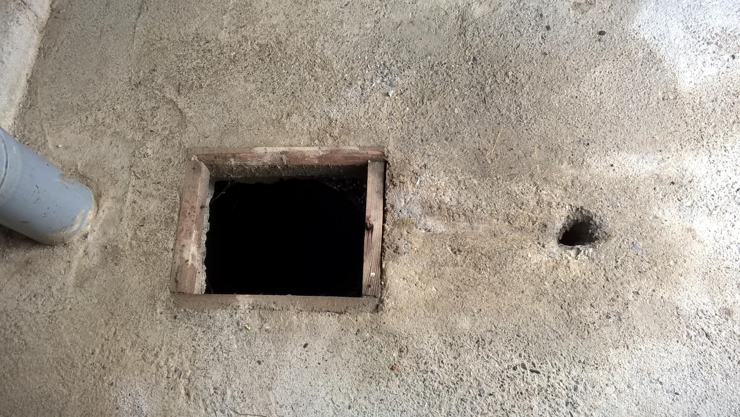 в туалетах в частных домах на Кавказе две дырки для справления нужды.