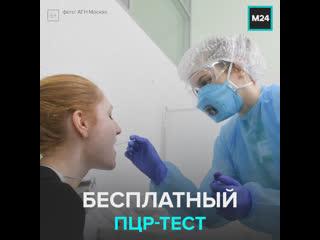 Бесплатный тест на Covid-19 — Москва 24