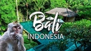 EPIC Jungle Villa in Bali left me Speechless Authentic Balinese food