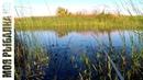 Рыбалка на озере. Пассивный карась.