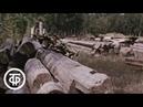Тропа в Беловодье (1989)