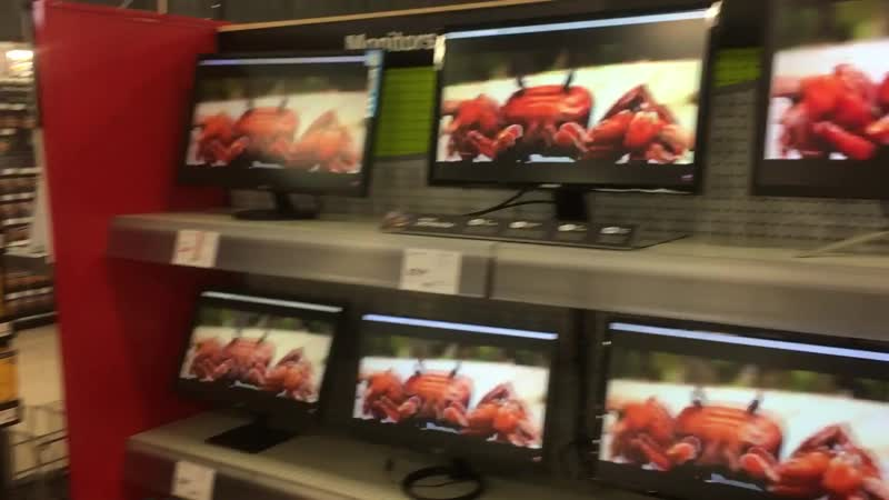 I was in a staples and I was bored I discovered that a long aisle of monitors were all connected to a single PC I located the