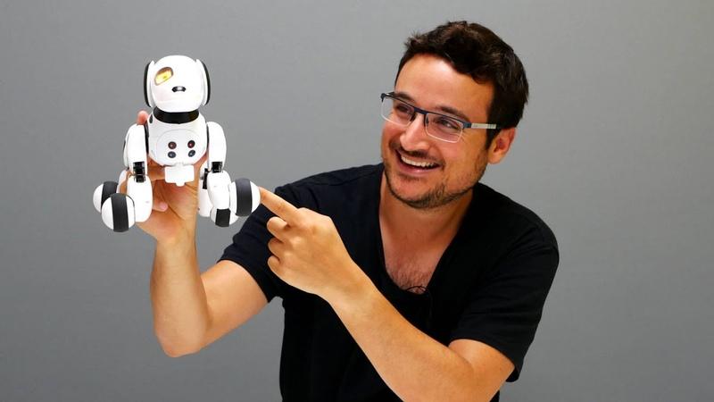 RC Robot Dog DIMEI 9007A Review