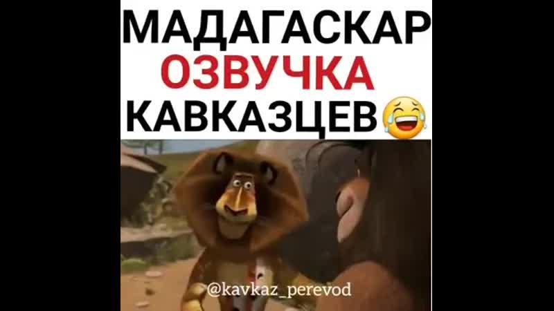 Мадагаскар озвучка 😂😂😂😂