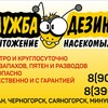 Alexey Dezinsektsia