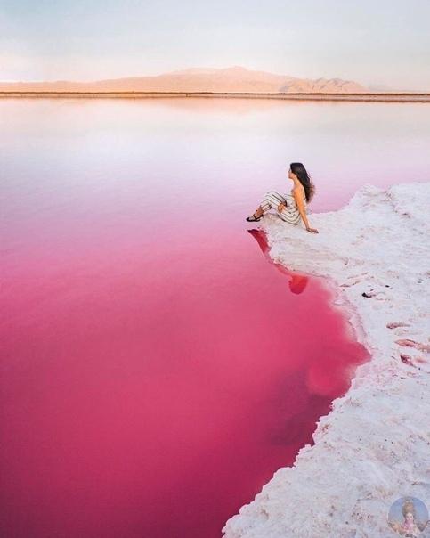 Розовое озеро в Иране