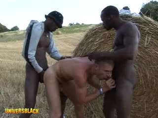Two hung african blacks top white boy in threesome