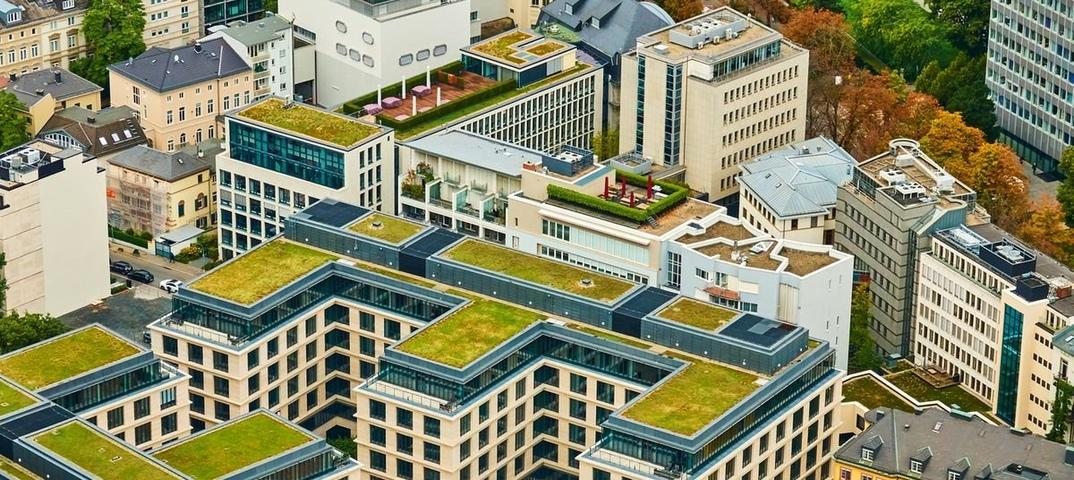 Росстандарт утвердил правила озелнения крыш домов