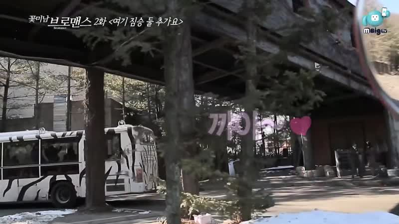 Lee Ki Kwang Son Dong Woon Celeb Bros EP2. Here! Add two more animals!
