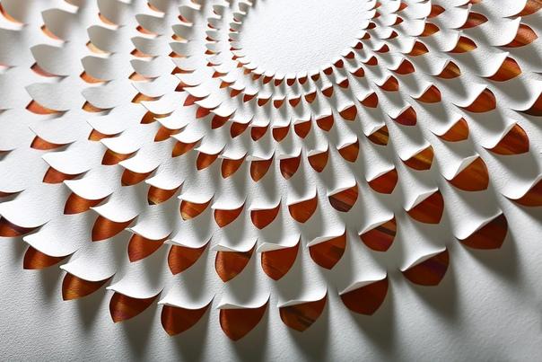 Плотные листы обычной белой бумаги в руках художницы Лизы Родден (Lisa Rodden