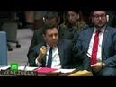 Небензя помешал Пенсу выгнать постпреда Венесуэлы с заседания Совбеза ООН