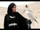 Eagle 🦅 Flight in Dubai