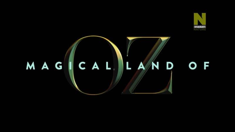 Волшебная страна Оз 2 серия / Magical Land of Oz (2019)