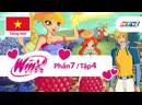 Những Nàng Tiên Winx Xinh Đẹp: Phần 7, Tập 4 - «Màu Sắc Đầu Tiên Của Vũ Trụ» (Tiếng Việt, HTV3)