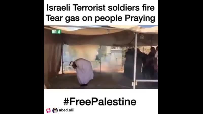 Soldats terroristes israéliens harcelant des Palestiniens qui essaient de prier