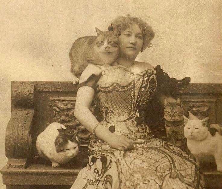 Даже в 1890 году, одной кошки было мало)))