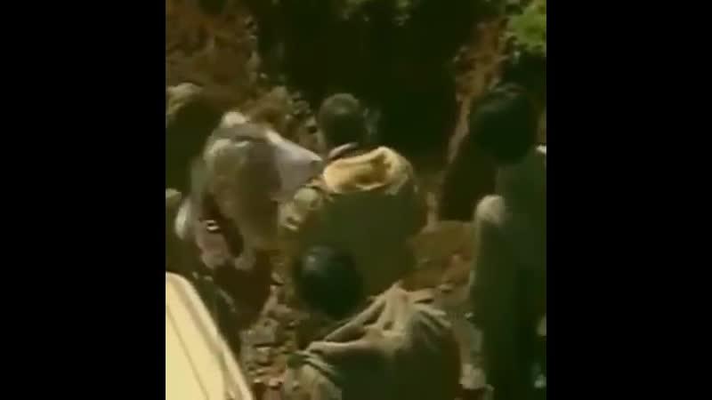 Eşq olsun İslam rəhbəri Ayətullah Xamenei ağam