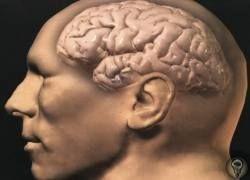 Топ-10 загадок человеческого мозга