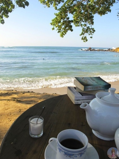 Хочу чтобы моё утро начиналось в таком месте