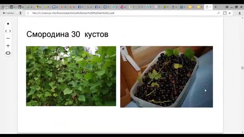Татьяна Чистякова Практическая пермакультура Водный баланс и биоразнообразие на участке
